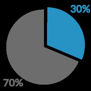 Pie chart representing 30 / 70 split