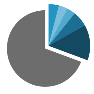 Pie chart showing diverse distribution of population